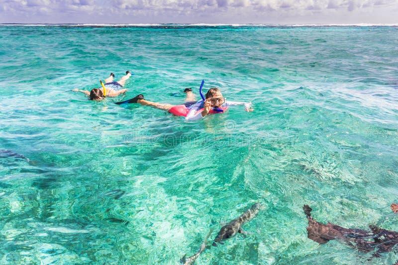 Люди snorkeling в рифе около чеканщика Caye в Белизе стоковые изображения rf