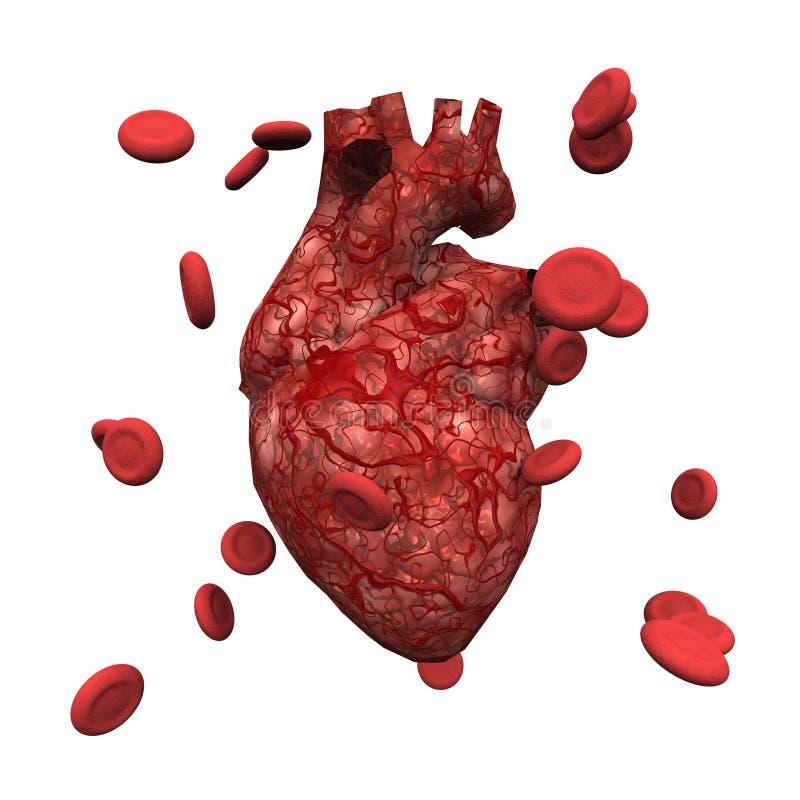 Людские сердце и клетки иллюстрация штока