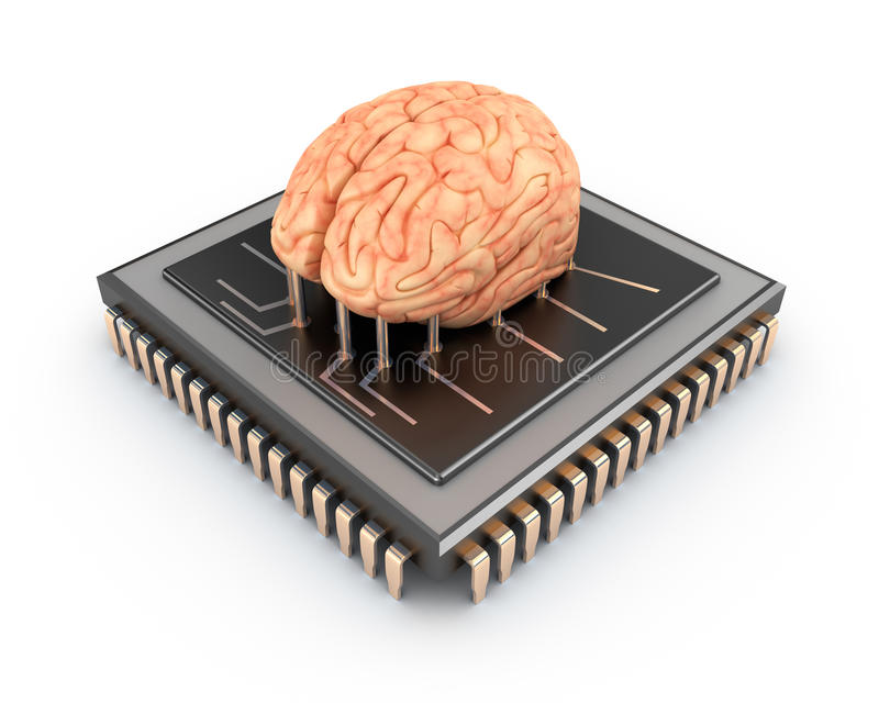 Людской мозг и компьютерная микросхема иллюстрация штока