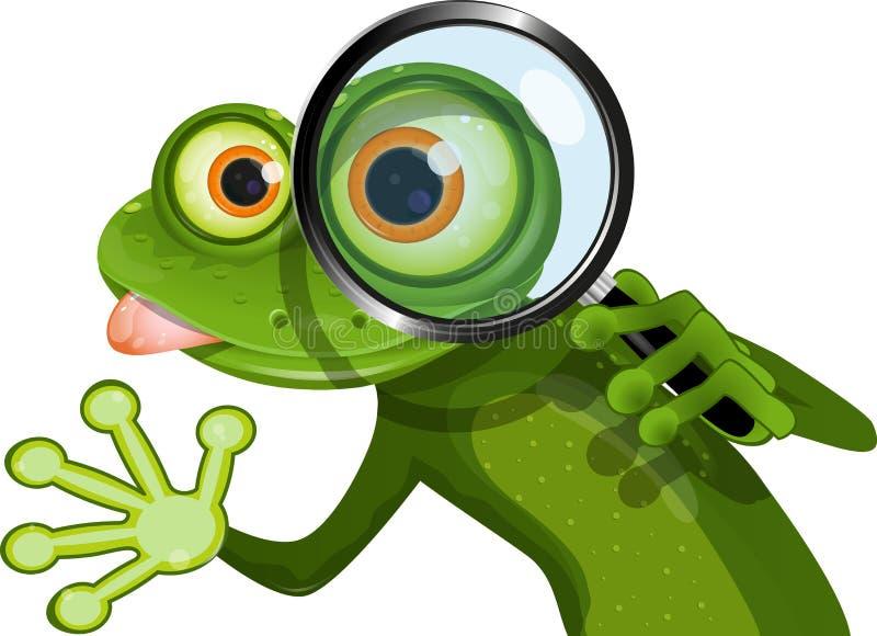 Лягушка и лупа бесплатная иллюстрация