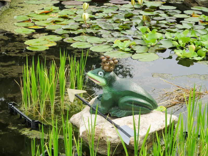 Лягушка сказки в пруде стоковое изображение rf