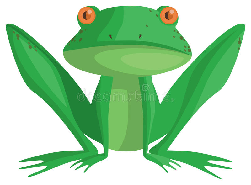 Лягушка Стоковая Фотография