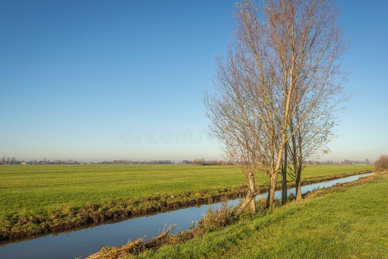 Лёгкие пейзажи осеннего сезона стоковое изображение