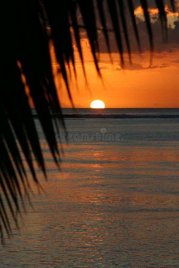 Маврикий над заходом солнца стоковая фотография