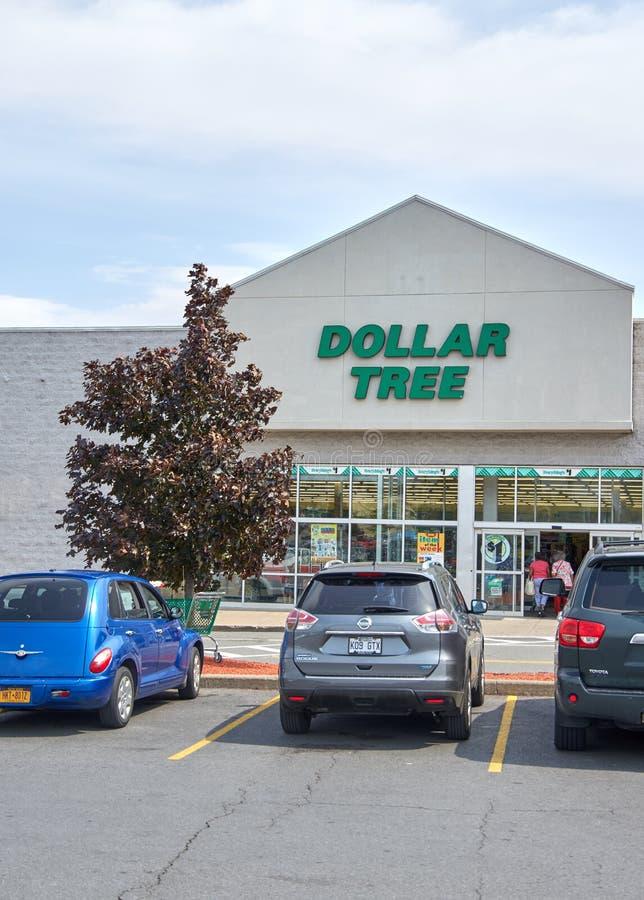 Магазин и знак дерева доллара стоковые изображения rf