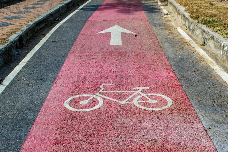 Майна велосипеда для велосипедиста безопасности стоковое изображение