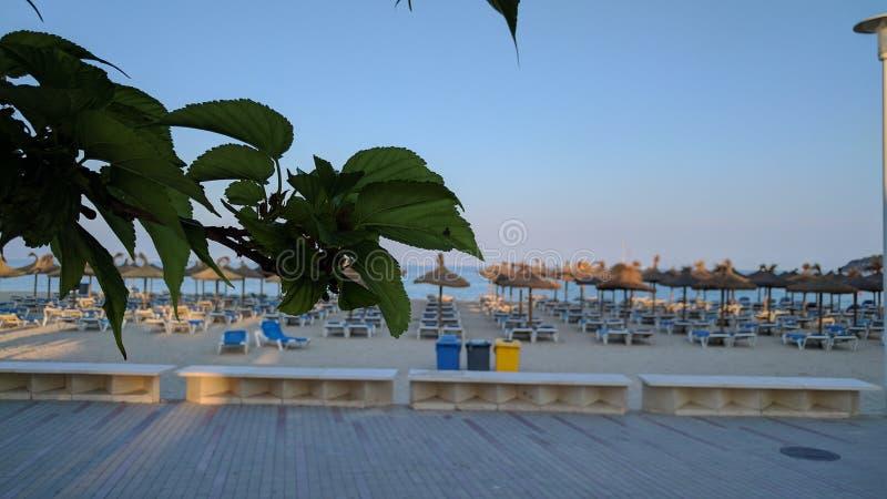 Майорка - солнечный остров стоковое изображение rf