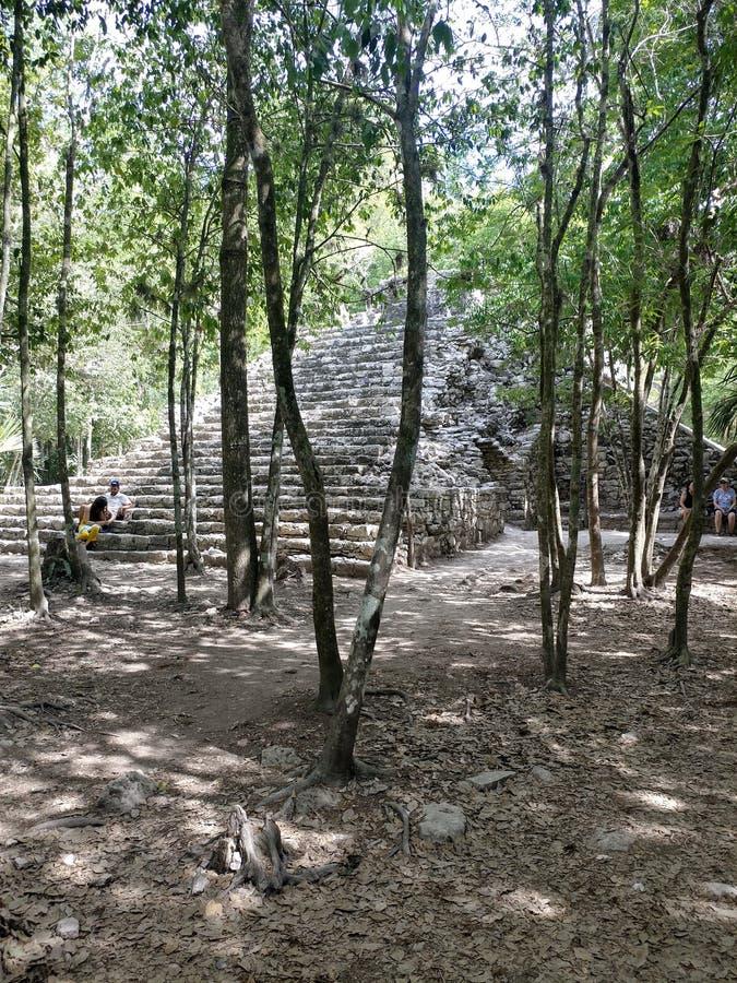Майяские руины на Coba стоковое фото