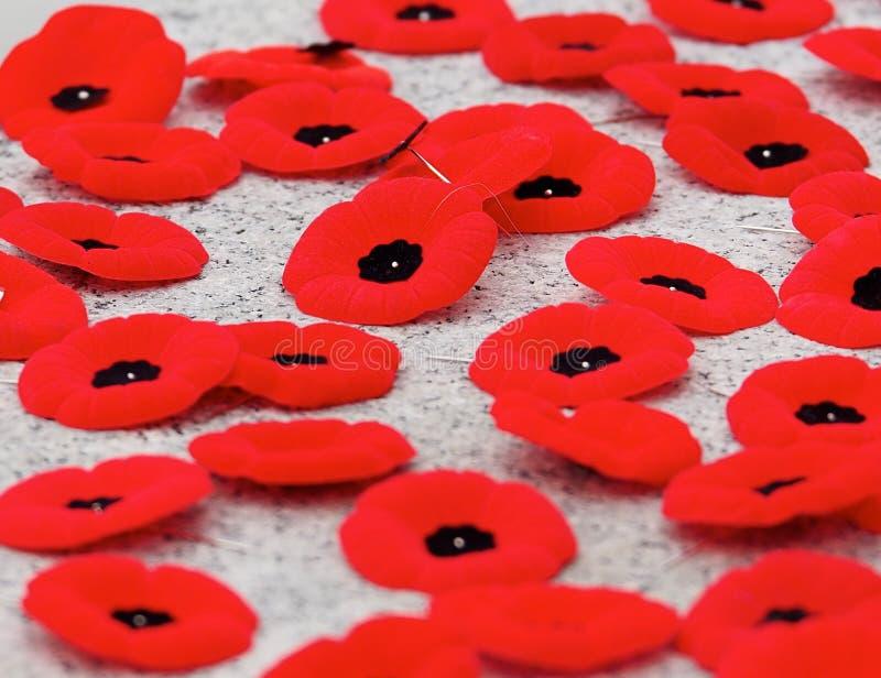 Маки на обслуживании день памяти погибших в первую и вторую мировые войны стоковая фотография