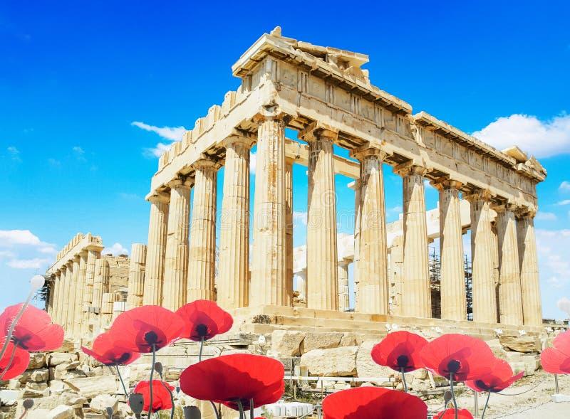 Маки сезона Афин Греции Парфенона sping красные стоковое фото rf