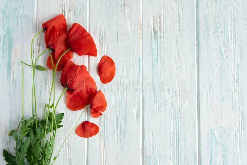 Маки цветков на деревянной предпосылке с copyspace Предпосылка для знамени с маками Символ праздника и памяти стоковые изображения rf