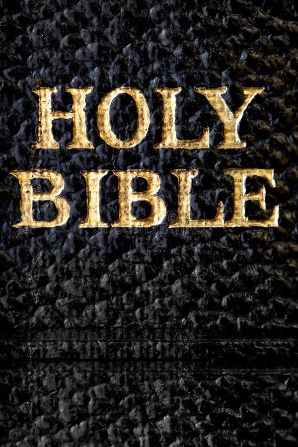 макрос библии святейший стоковая фотография