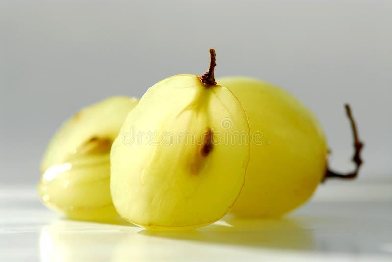 макрос виноградин стоковое изображение rf