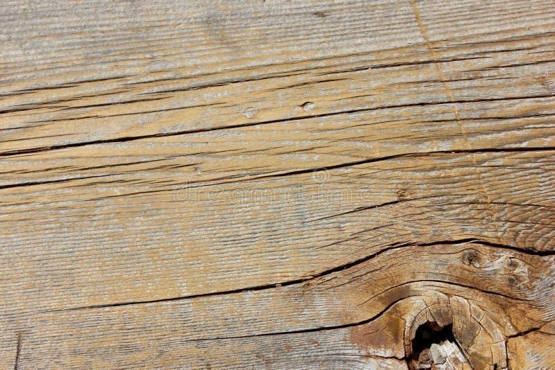 Макрос выдержал деревянная текстура планки отверстия узла зерна стоковое фото rf