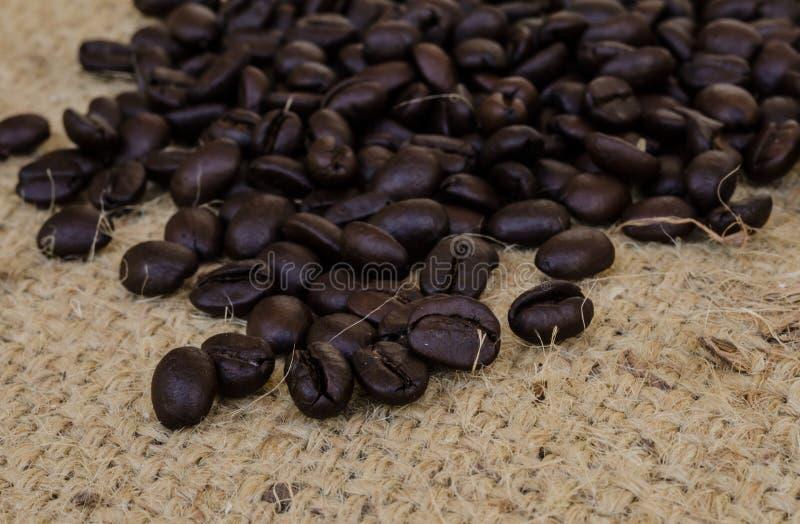 Download макрос кофе завтрака фасолей идеально изолированный над белизной Стоковое Фото - изображение насчитывающей напитка, естественно: 40589668
