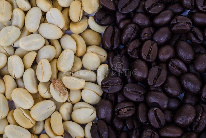 Download макрос кофе завтрака фасолей идеально изолированный над белизной Стоковое Изображение - изображение насчитывающей aiders, темно: 40589731
