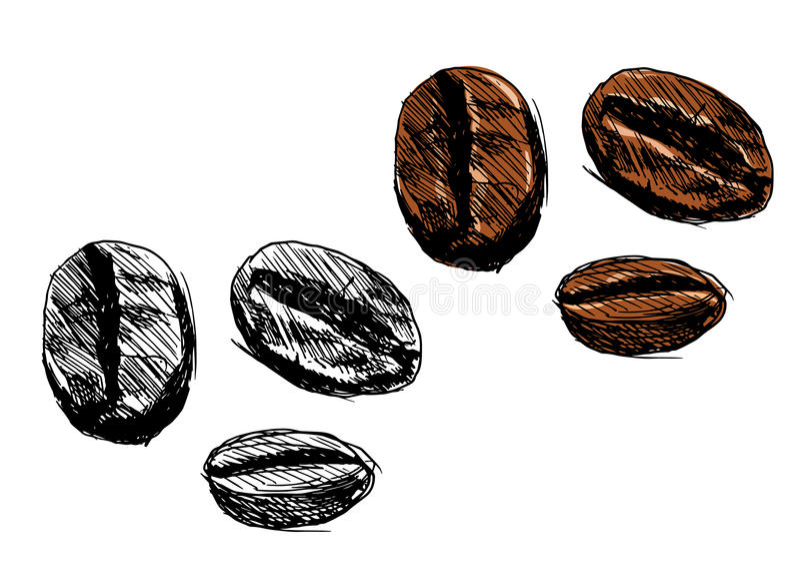 макрос кофе завтрака фасолей идеально изолированный над белизной бесплатная иллюстрация