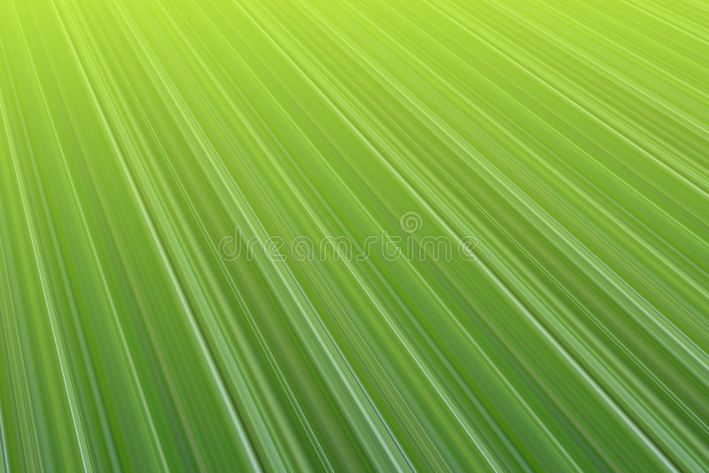 макрос листьев иллюстрация вектора