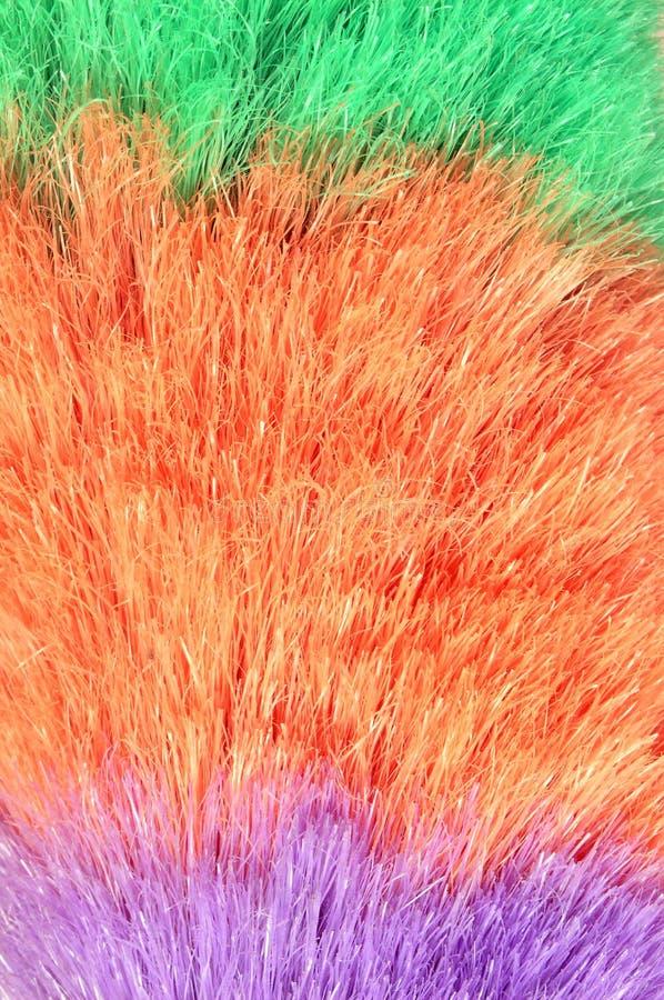 макрос пера сыпни Стоковые Фото