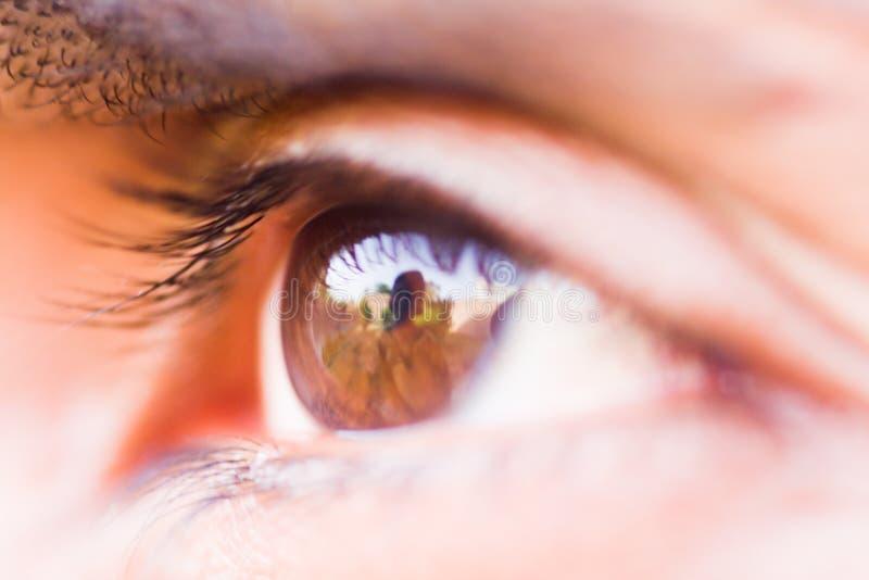 Макрос человеческого глаза стоковое изображение rf