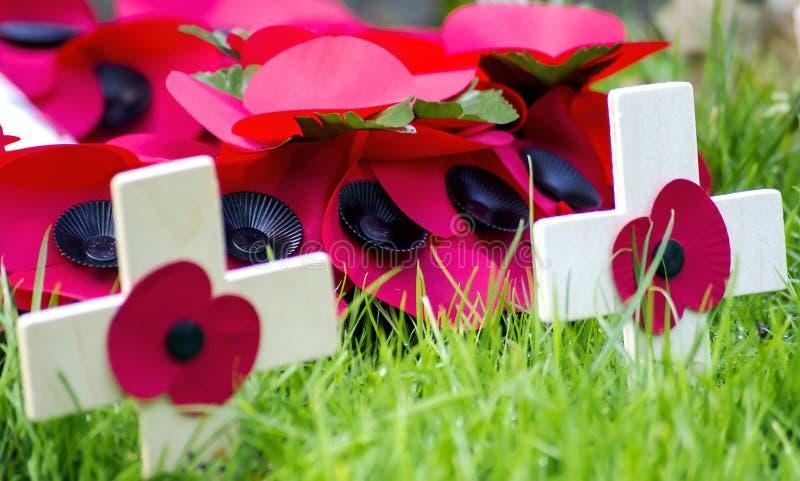 Мак день памяти погибших в первую и вторую мировые войны стоковые фото