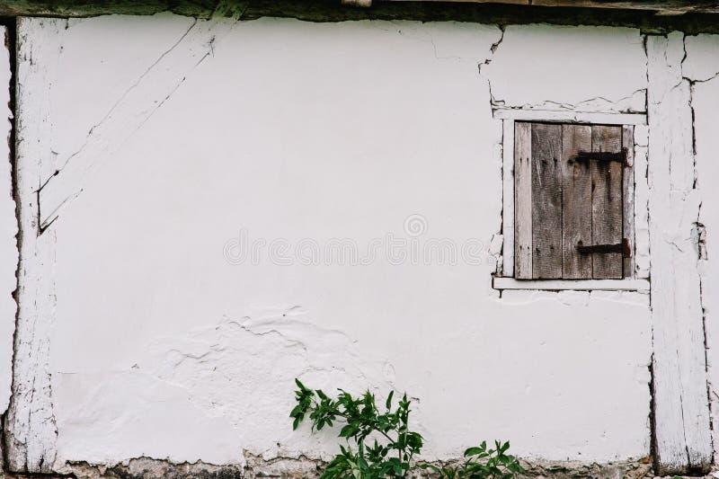 Малая деревянная дверь в белой стене barman треснуто Дверь к th стоковое фото