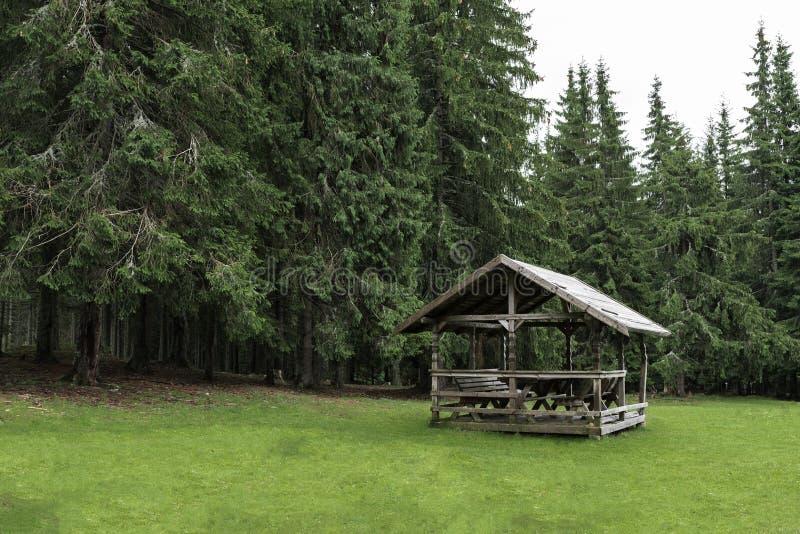 Малая деревянная кабина глубоко внутри леса стоковые фотографии rf