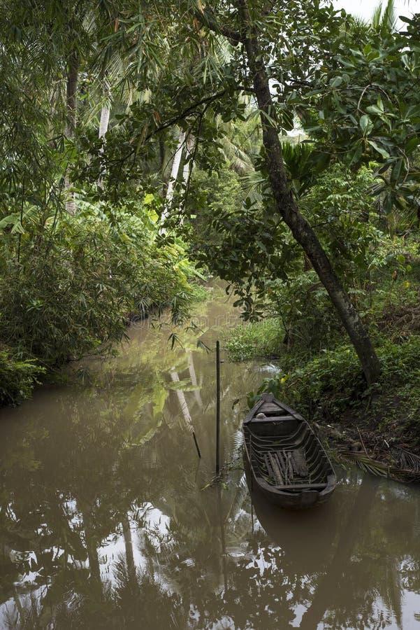 Малая деревянная шлюпка строки припарковала на потоке в джунглях в перепаде Меконга, Вьетнаме стоковое фото rf