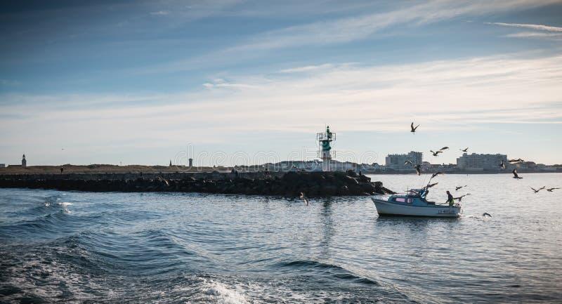Малая рыбацкая лодка входя в гавань сопровоженную чайками стоковое изображение