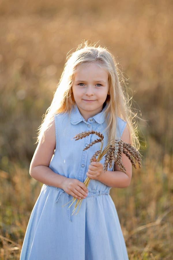 Маленькая блондинка стоит летом на пшеничном поле с пикелезами в руках. стоковые фото