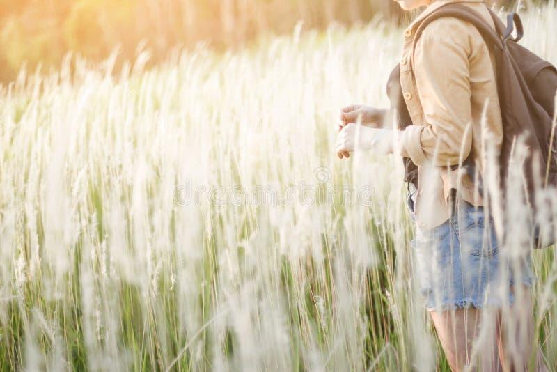 Маленькая девочка битника скачет при рюкзак в лесе, ослабляет время и наслаждаться природа вокруг стоковое фото rf