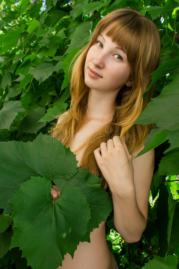 Маленькая девочка в листьях виноградин 4790 стоковое изображение rf