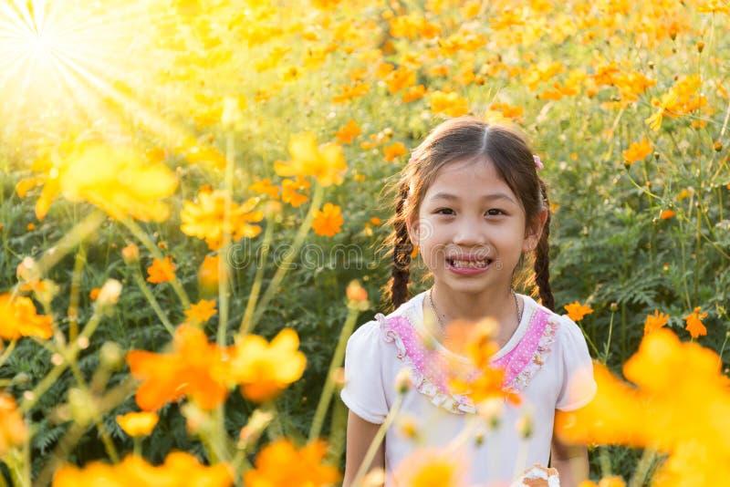 Маленькая девочка в поле желтого цвета космоса цветет на sunligh стоковое фото