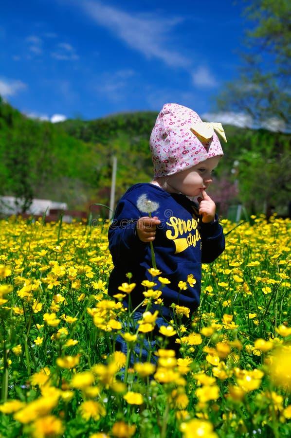 Маленькая девочка в поле цветков стоковые фото