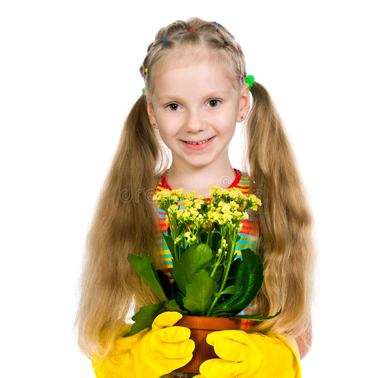 Маленькая девочка держа завод стоковые изображения
