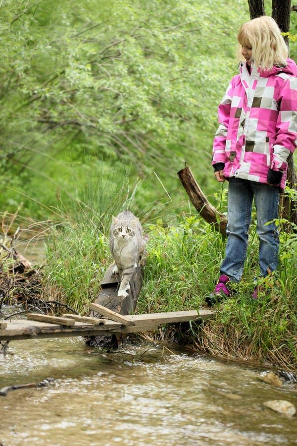 Маленькая девочка играет в природе с ее котом стоковое фото rf