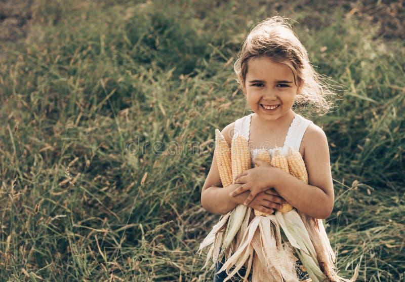 Маленькая девочка играя в кукурузном поле на осени Ребенок держа удар мозоли Сбор с детьми Деятельности при осени для детей стоковые изображения rf