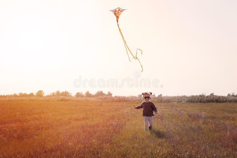 Маленькая девочка летая змей в поле стоковое фото