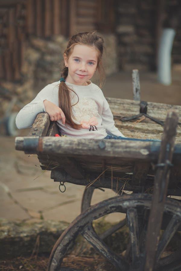 Маленькая девочка младенца с голубыми глазами с рубашкой платья волос косички brunnette нося белой и представлять на тележке фуры стоковая фотография rf