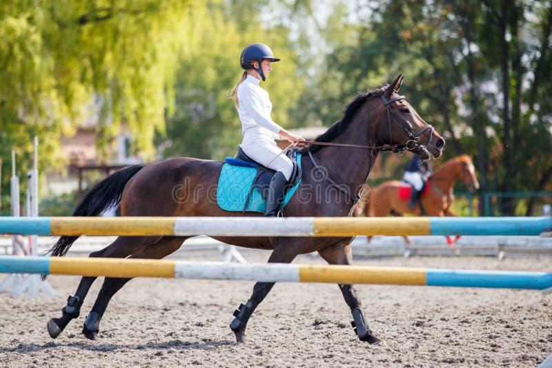 Маленькая девочка на лошади залива скакать на ее курсе стоковое изображение