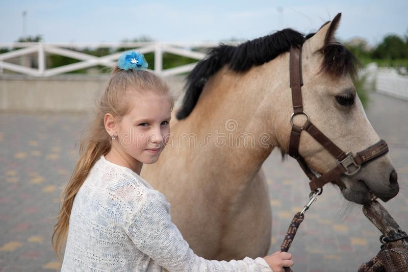 Маленькая девочка очищает и расчесывает ее пони и седлает его стоковые фото