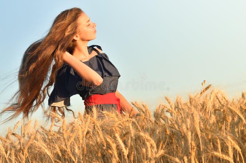 Маленькая девочка развевая ее длинные волосы в пшеничном поле стоковое изображение