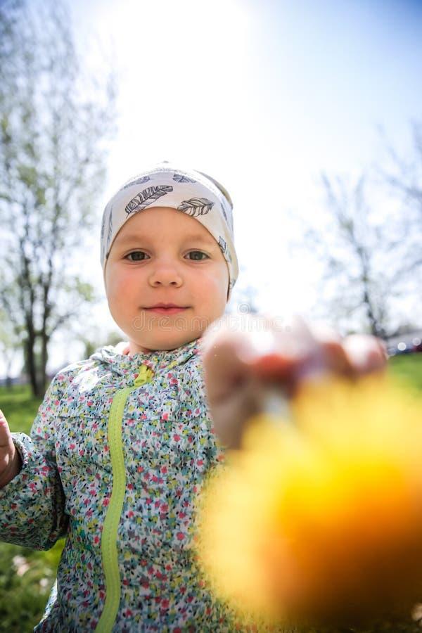 Маленькая девочка сидя на траве и держа желтые одуванчики стоковое фото