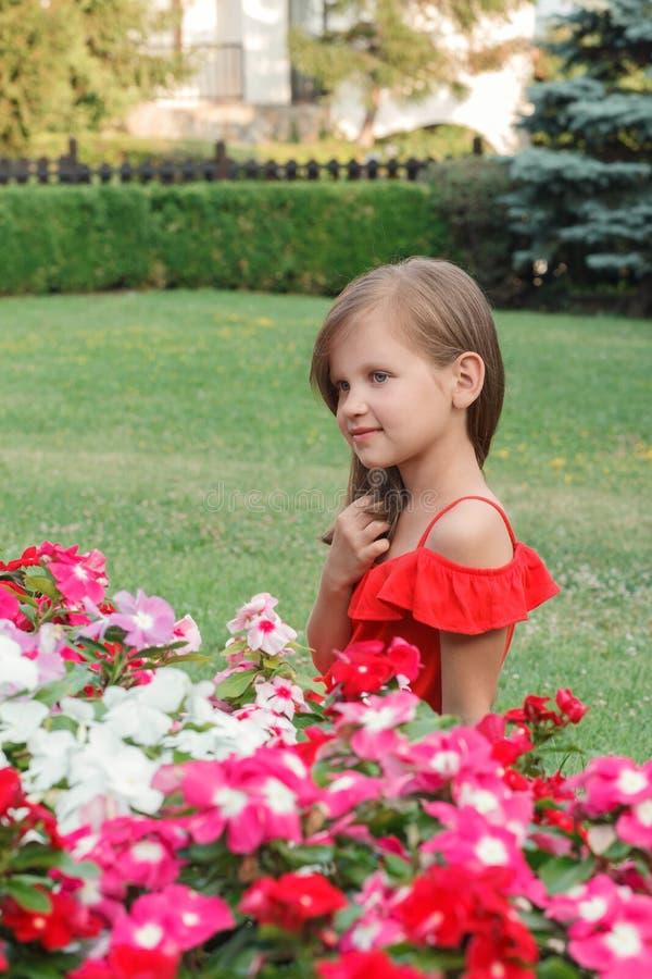 Маленькая девочка с длинными светлыми волосами в красном платье стоковое изображение rf