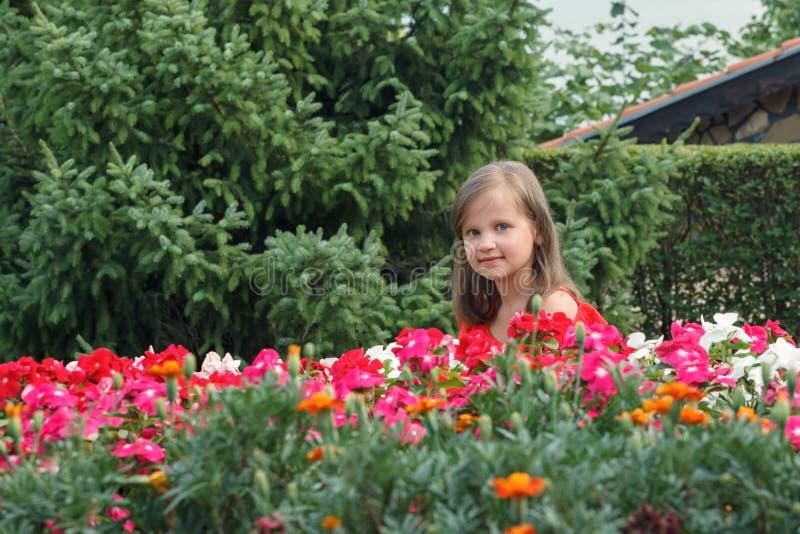Маленькая девочка с длинными светлыми волосами в красном платье, закрашенная за цветами стоковое фото rf