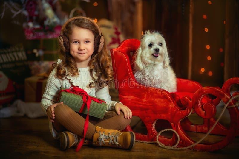 Маленькая девочка с собакой на Рожденственской ночи стоковые изображения rf