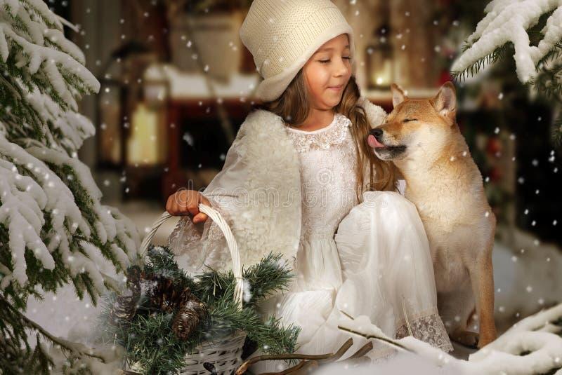 Маленькая девочка с собакой Shiba Inu стоковые изображения
