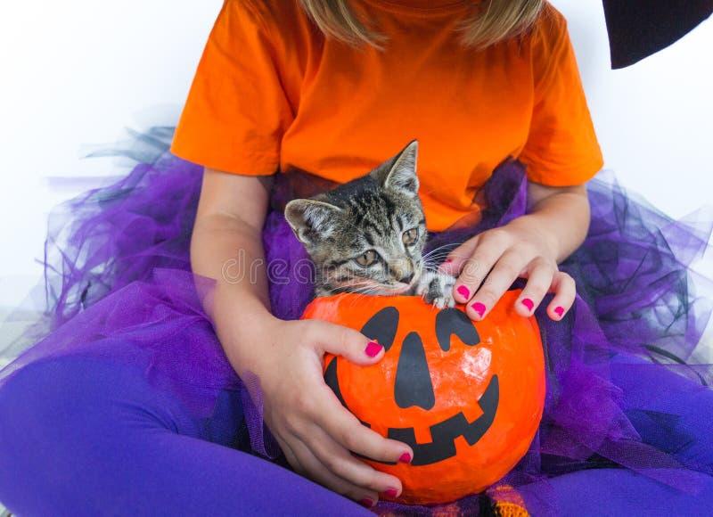 Маленькая девочка тыква костюма ведьмы чего котенок стоковая фотография