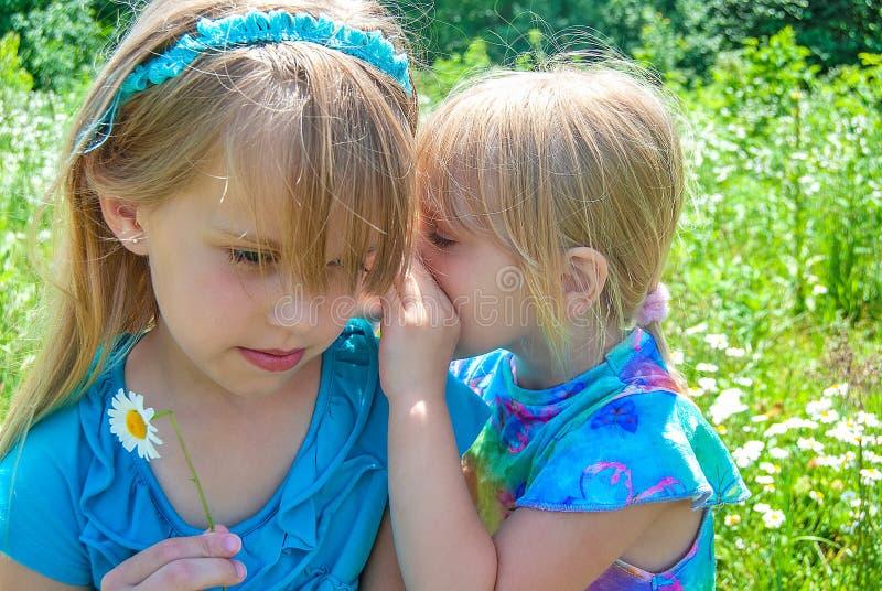 Маленькая девочка шепча секрету стоковая фотография