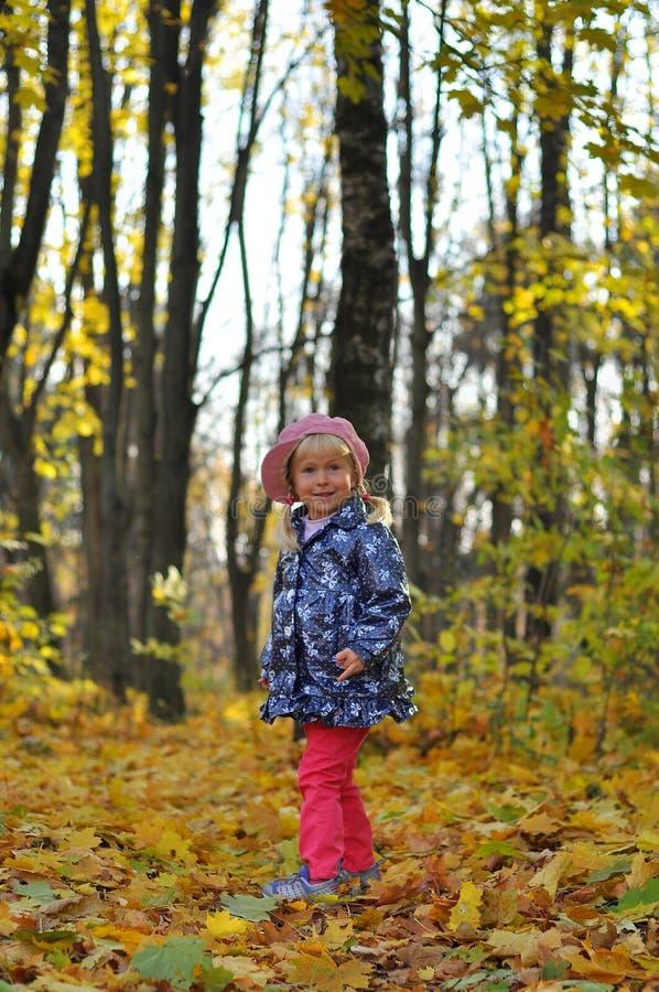 Маленькая девочка outdoors в парке осени стоковая фотография